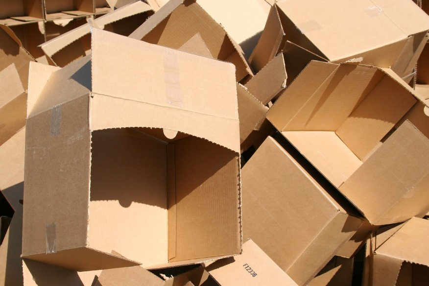 Exciting things to make with cardboard boxes this little for Things you can make with bamboo